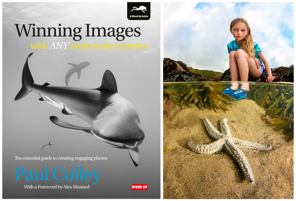 Winning Images & the Royal Photographic Society gold medal image